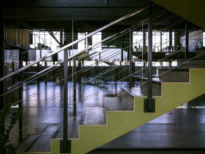 Escaleras de madera en Prado Veraniego